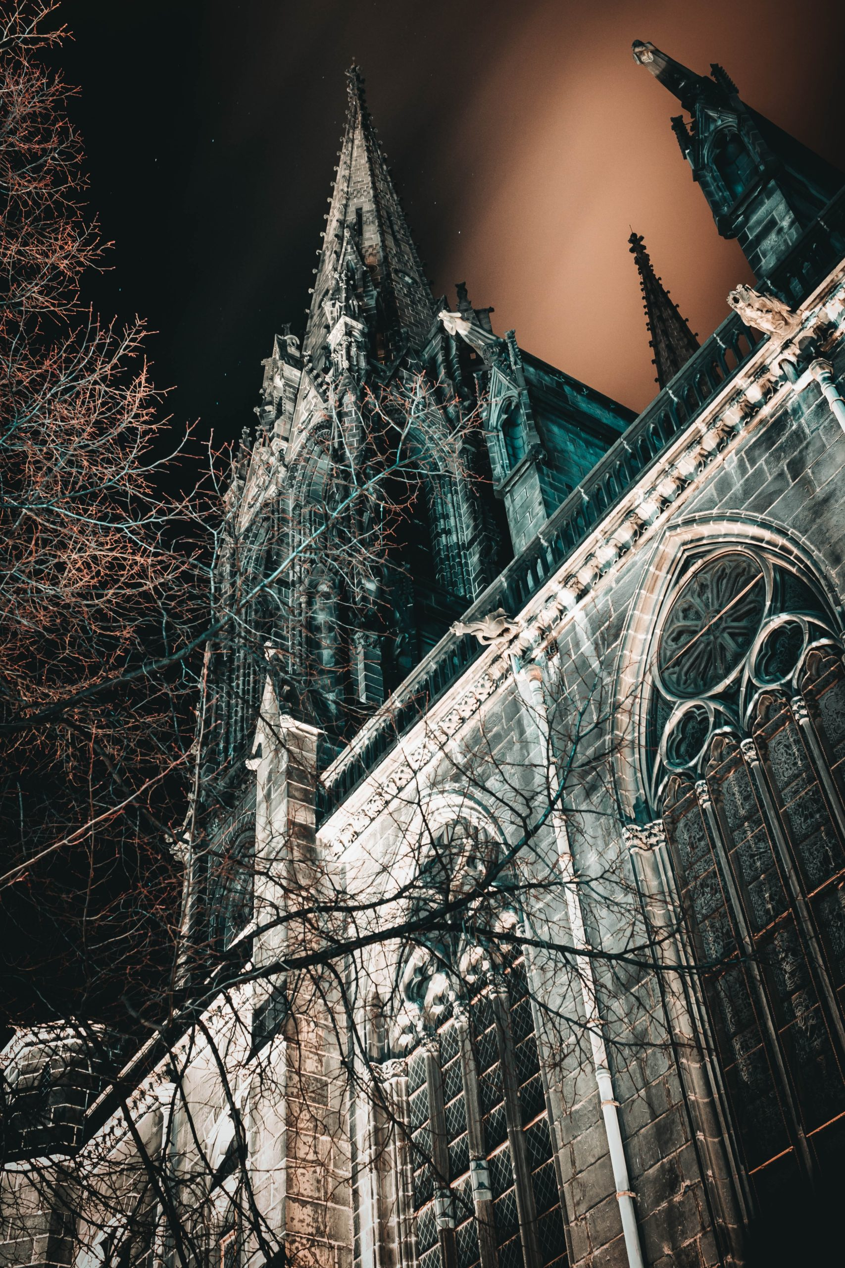 Cathédrale Clermont-Ferrand de nuit Photo by Mat Reding on Unsplash